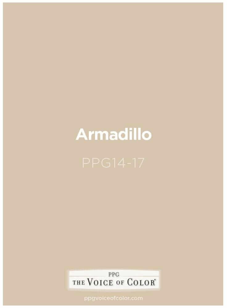 paint-option-Armadillo.jpg